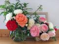 060526_rose