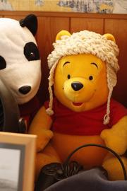 090531_pooh